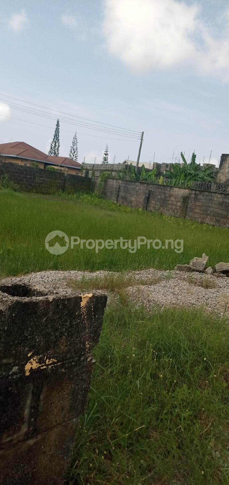 Residential Land Land for sale Paved  Road,  Eden garden Estate Ajah Lagos - 3