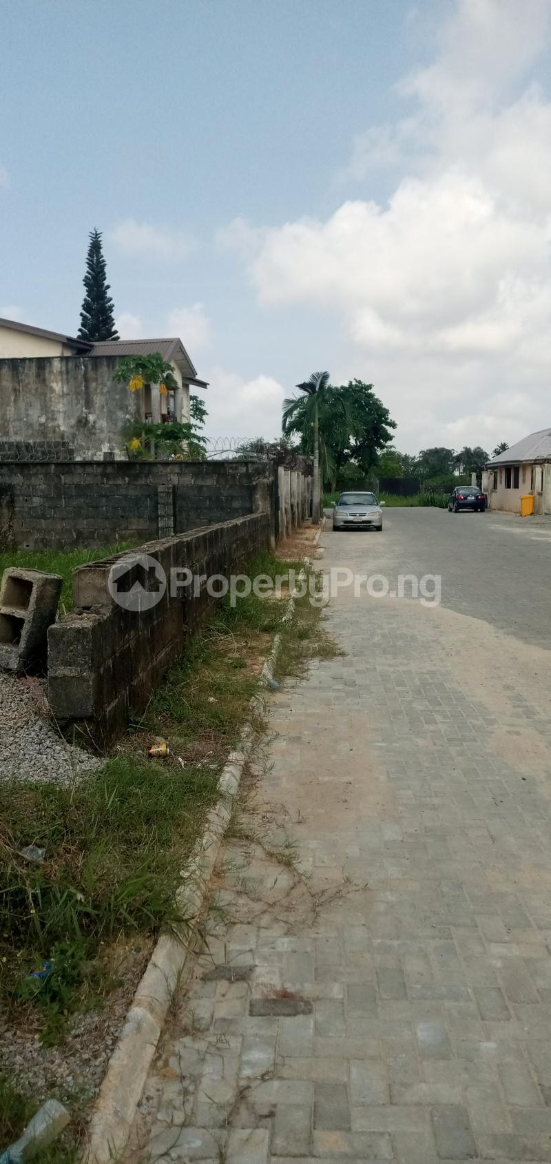 Residential Land Land for sale Paved  Road,  Eden garden Estate Ajah Lagos - 5