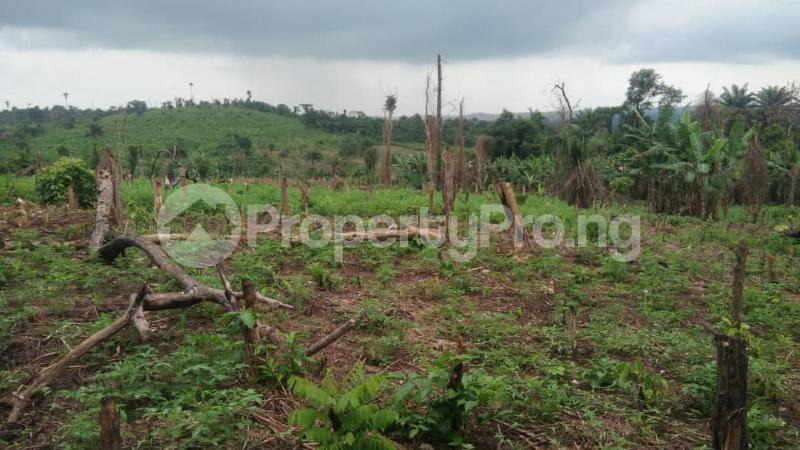 Land for sale Ife-ibadan Express Way after tollgate (Ajoda home town ) Egbeda Oyo - 0