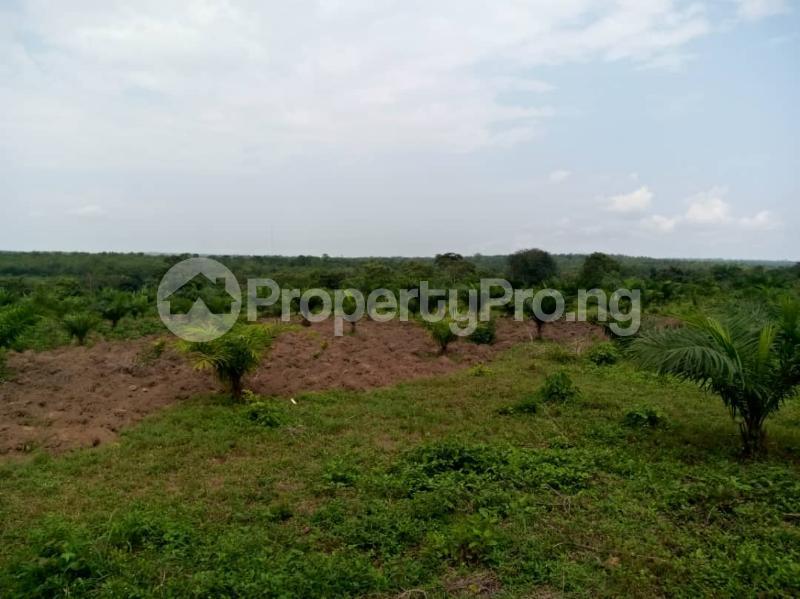 Commercial Land Land for sale ... Alabata Abeokuta Ogun - 5