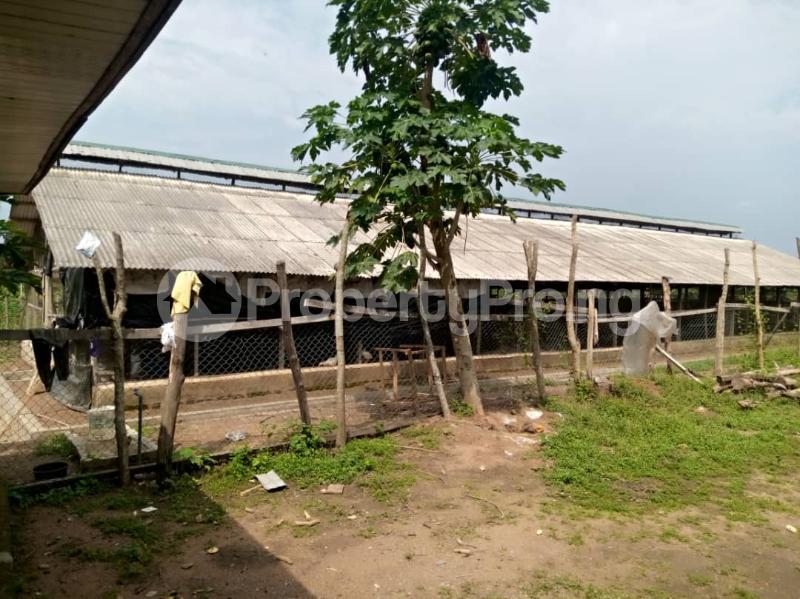 Commercial Land Land for sale ... Alabata Abeokuta Ogun - 3