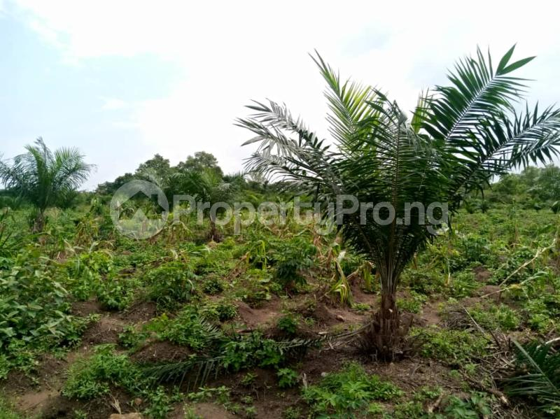 Commercial Land Land for sale ... Alabata Abeokuta Ogun - 4