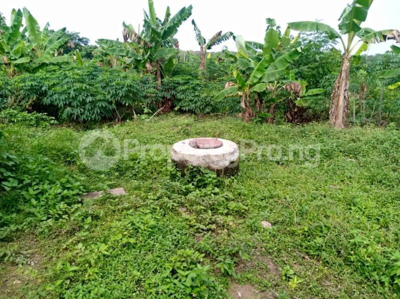 Commercial Land Land for sale ... Alabata Abeokuta Ogun - 6