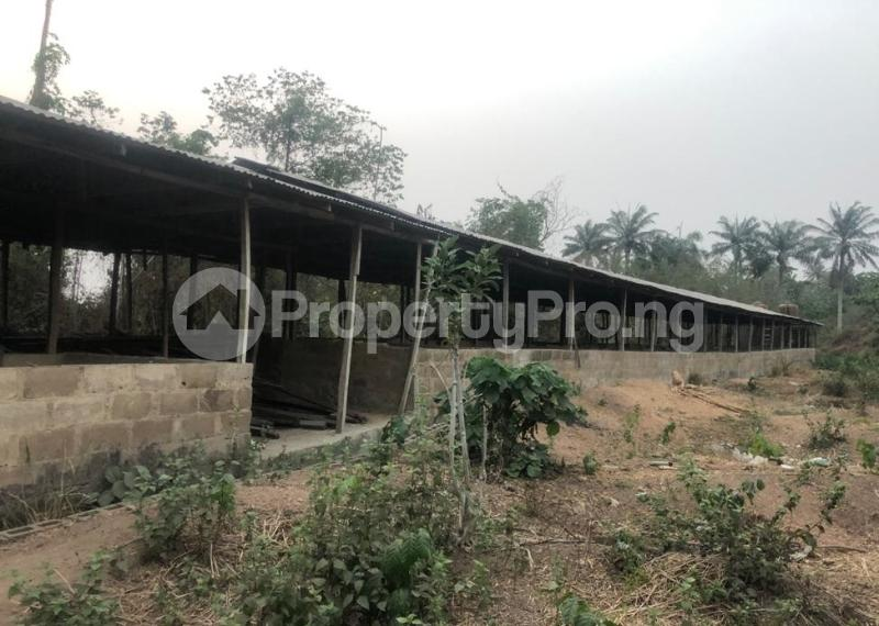 Factory Commercial Property for sale  badeku area alakia ibadan Airport Egbeda Oyo - 9