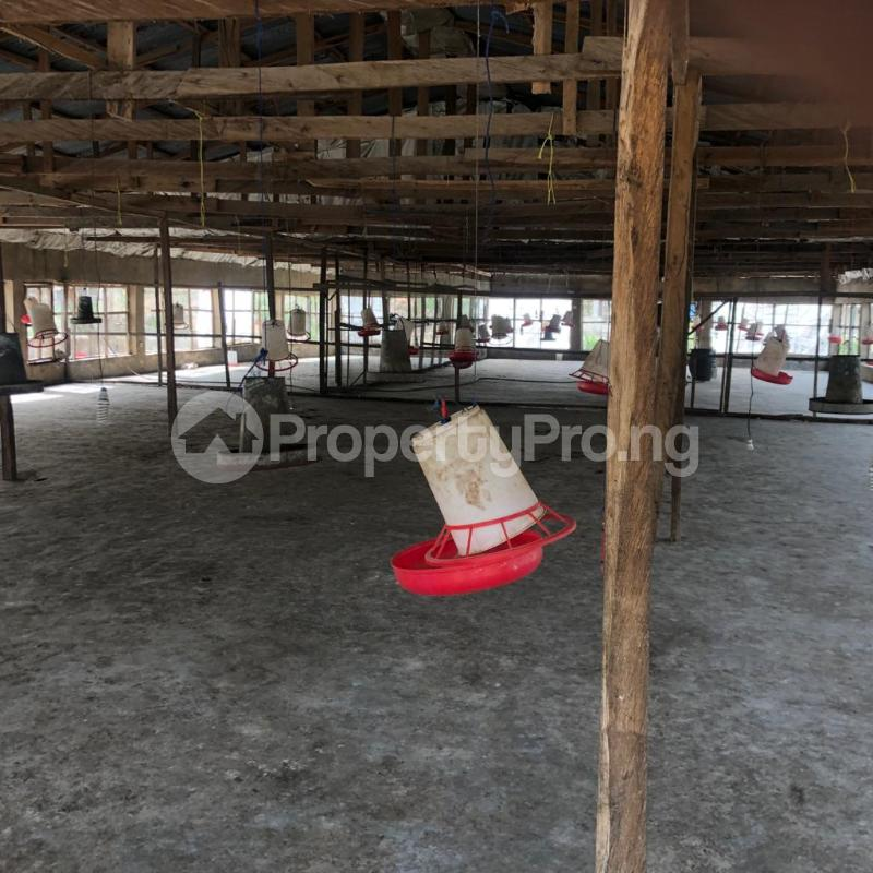 Factory Commercial Property for sale  badeku area alakia ibadan Airport Egbeda Oyo - 7