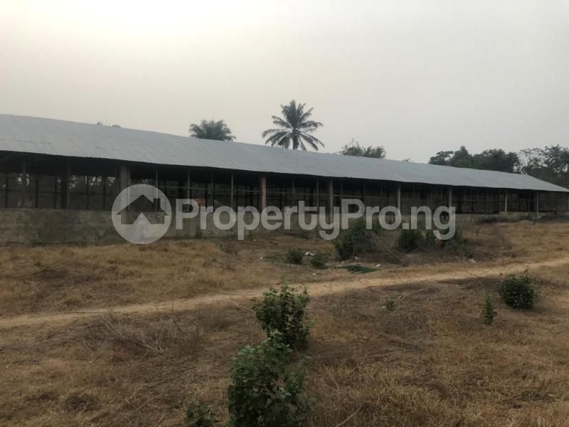 Factory Commercial Property for sale  badeku area alakia ibadan Airport Egbeda Oyo - 6