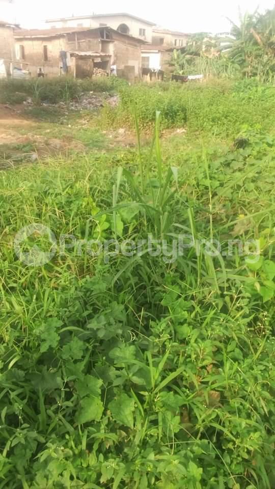 Residential Land Land for sale Off arobaba str idimu Idimu Egbe/Idimu Lagos - 0