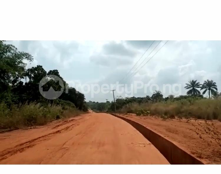 Residential Land Land for sale 15 minutes from UNIZIK temp site Isu Achala Road  Awka North Anambra - 0