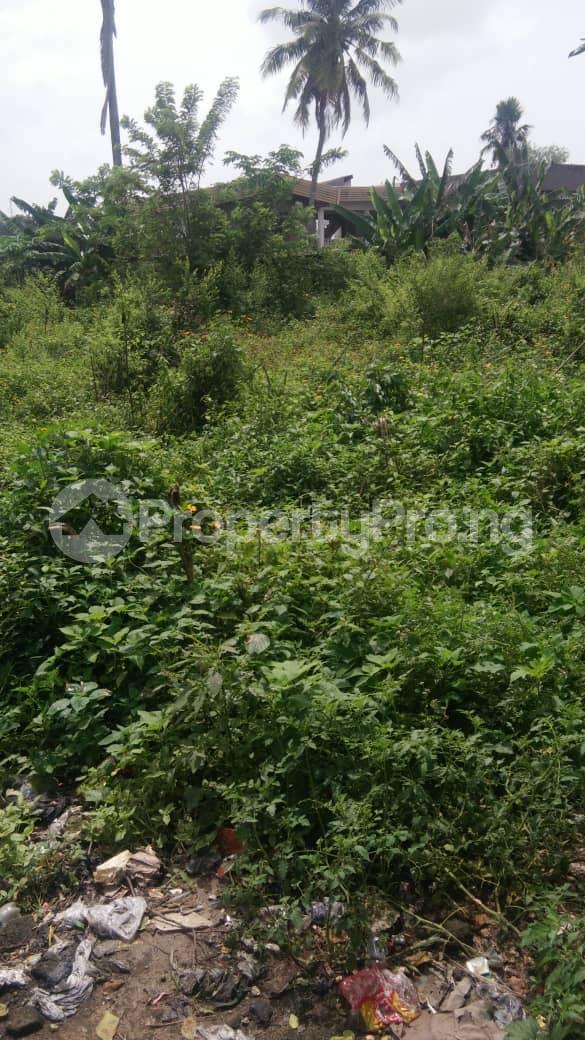 Land for sale Facing Ife Ibadan Express Way Egbeda Oyo - 0