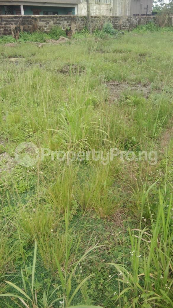Land for sale Ibadan-Ife express way Iwo Rd Ibadan Oyo - 0