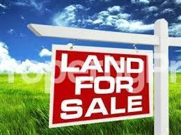 Residential Land Land for sale Greenville Estate  Badore Ajah Lagos - 1