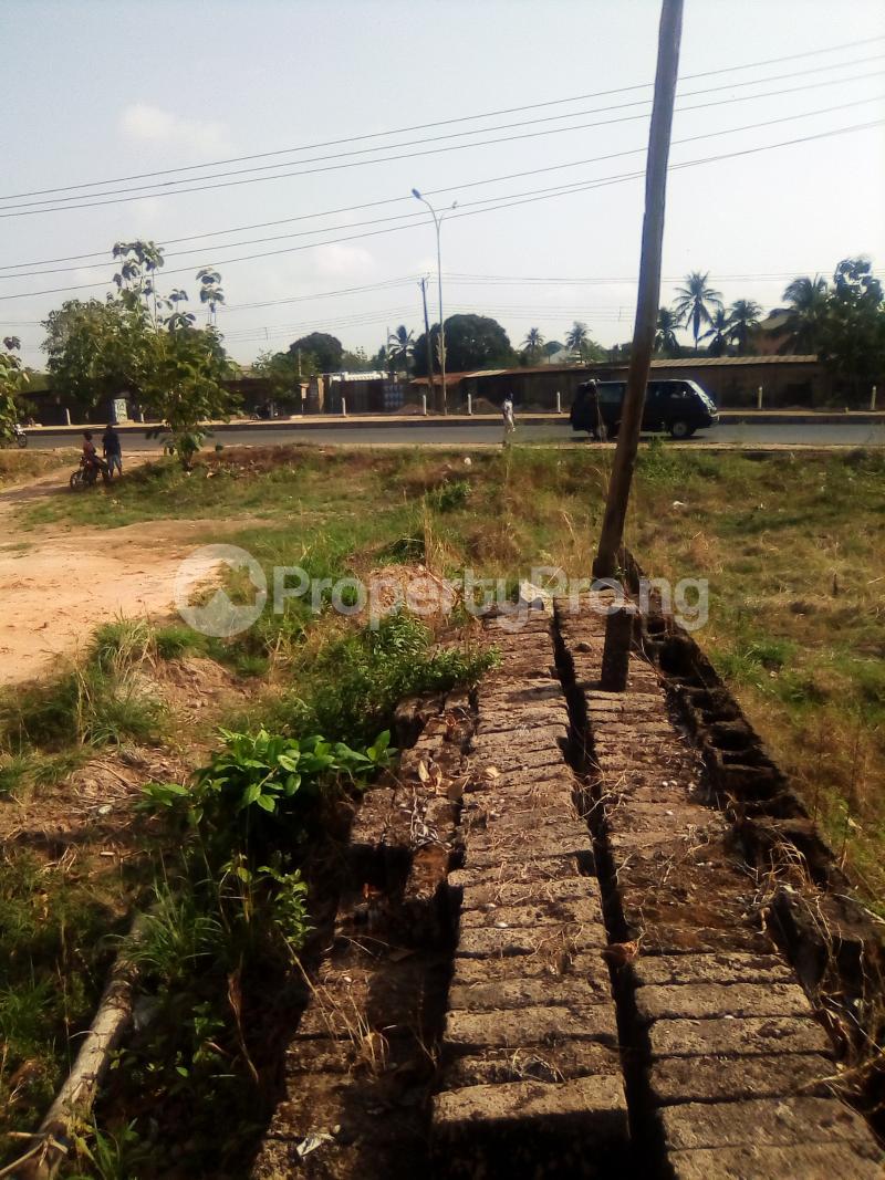 Commercial Land for sale Presco Junction, Enugu/abakaliki Expressway Abakaliki Ebonyi - 13