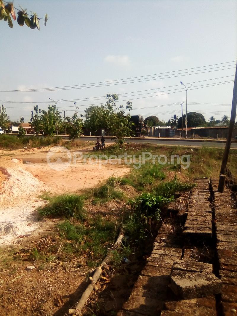 Commercial Land for sale Presco Junction, Enugu/abakaliki Expressway Abakaliki Ebonyi - 3