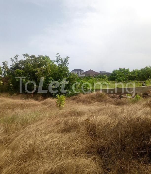 Land for sale Hopeville Estate, Before Novare Mall Sangotedo Lagos - 3
