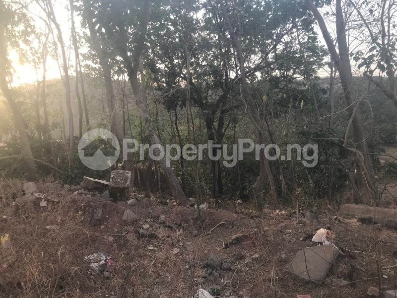 Residential Land for sale   Katampe Main Abuja - 4