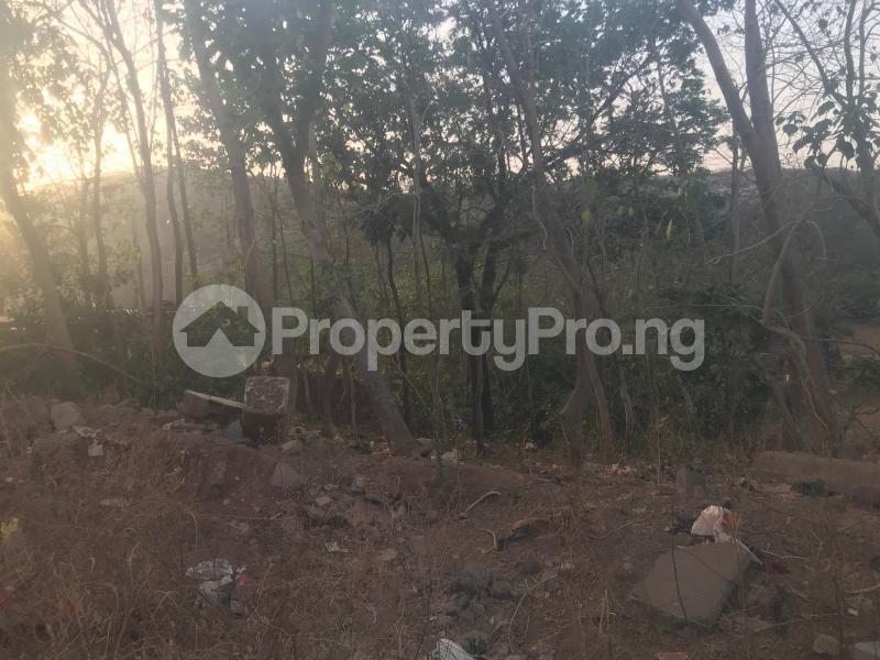 Residential Land for sale   Katampe Main Abuja - 5