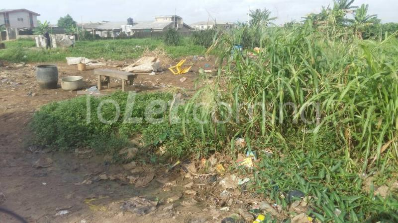 Land for sale EBUN MONYE STREET Ijegun Ikotun/Igando Lagos - 1