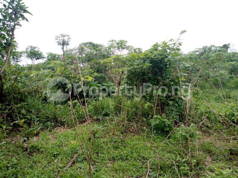 Commercial Land Land for sale sukuru village, Iyana offa off iwo road Iwo Rd Ibadan Oyo - 3