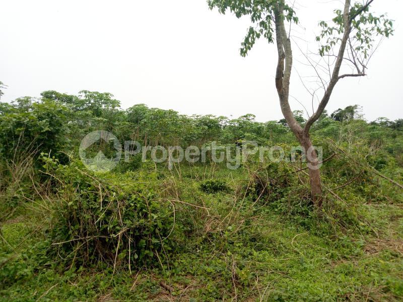 Commercial Land Land for sale sukuru village, Iyana offa off iwo road Iwo Rd Ibadan Oyo - 1