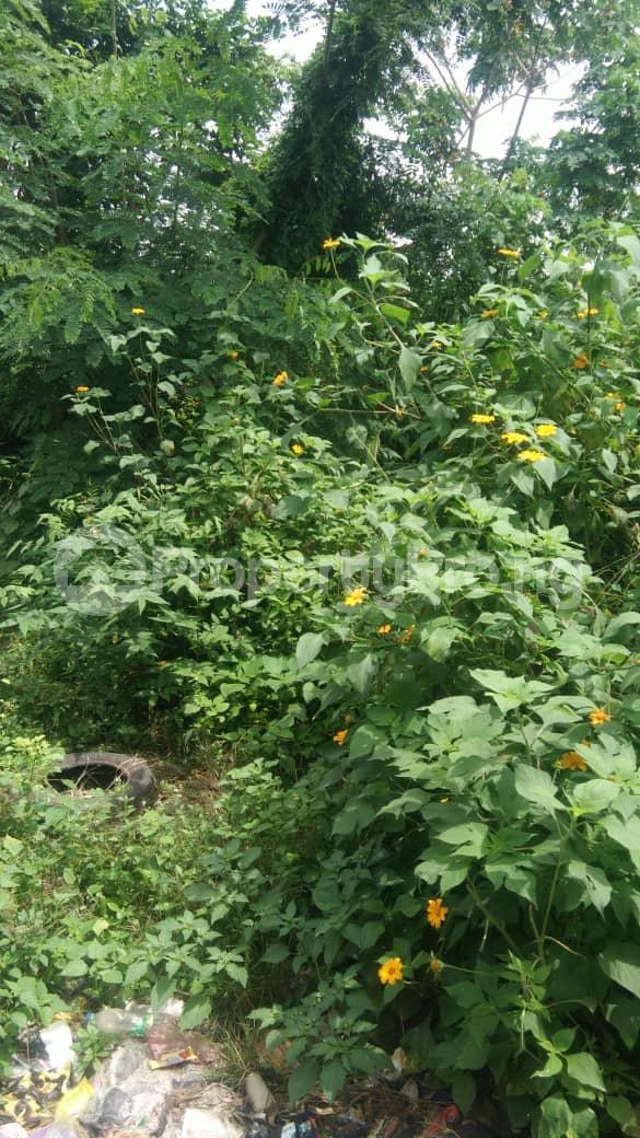 Land for sale Lagos/ibadan Express Way Challenge Ibadan Oyo - 0