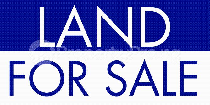 Commercial Land for sale Along Sapele Road Opposite Satanna Market Oredo Edo - 0