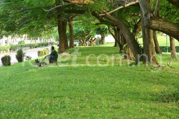 Land for sale Fountain Springville Estate, Monastery Road  Sangotedo Ajah Lagos - 16