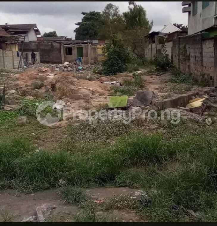 Land for sale Pedro road  Palmgroove Shomolu Lagos - 2