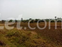 Land for sale Iloti Village Along Epe I.ode Rd Alekunifesowapo Odogbolu Ogun - 1