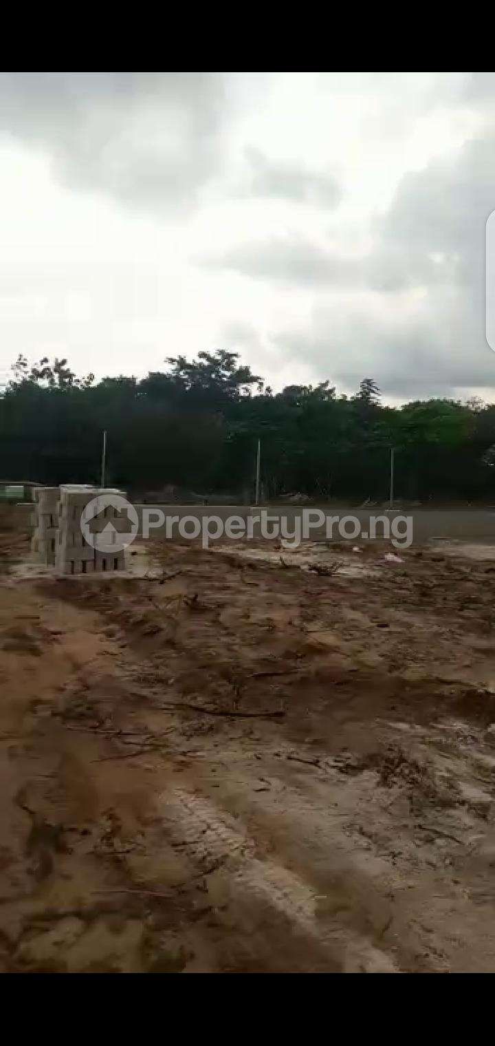 Mixed   Use Land Land for sale Umu Eme, Ntu Road, Owerri. Owerri Imo - 4