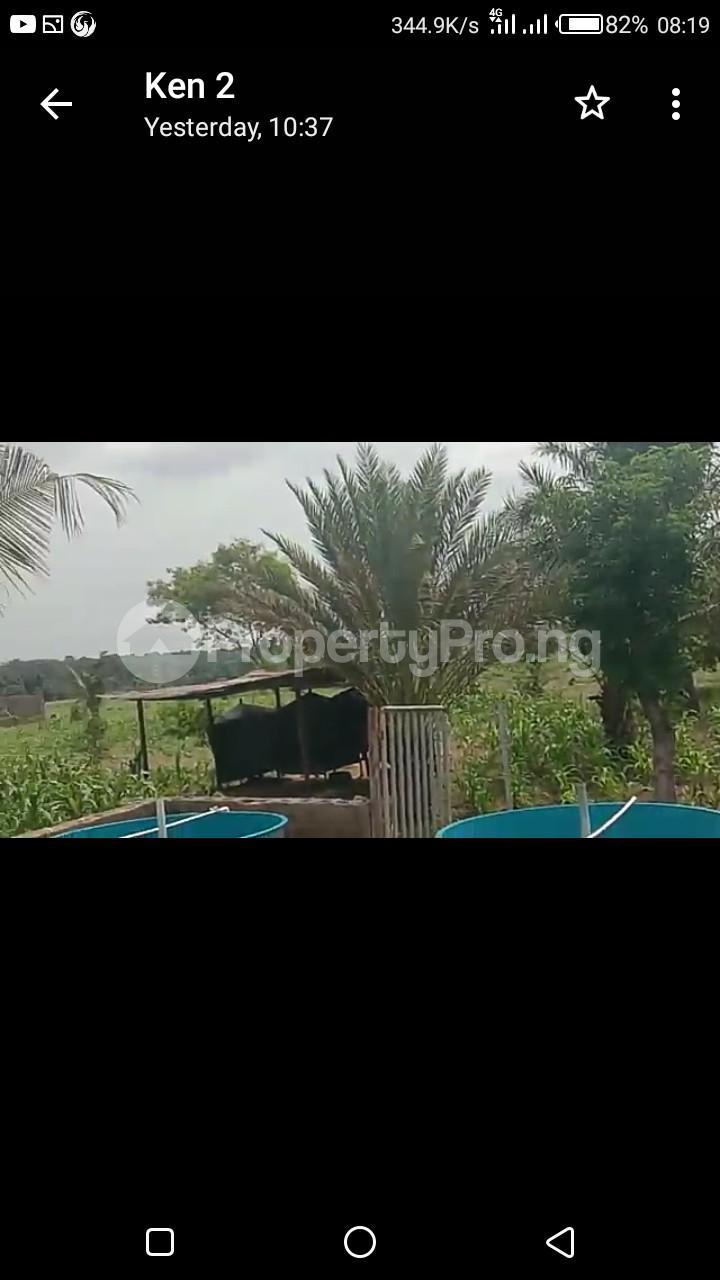 Commercial Land Land for sale Kaduna Abuja Express Way Kagarko Kaduna - 6