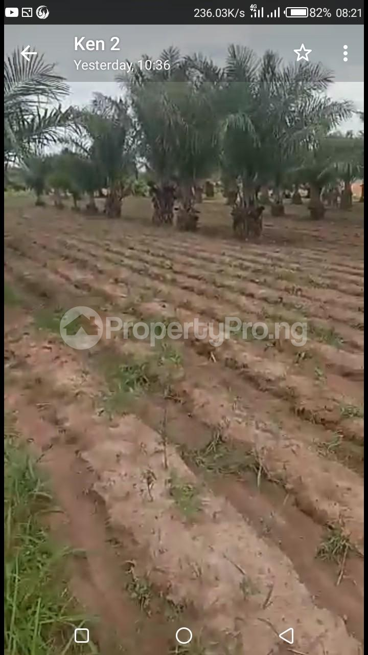 Commercial Land Land for sale Kaduna Abuja Express Way Kagarko Kaduna - 2
