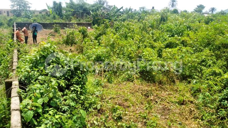 Land for sale Off Nddc Road. Ikwerre Rivers - 4