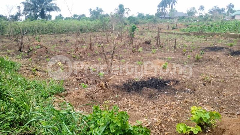 Land for sale Off Nddc Road. Ikwerre Rivers - 3