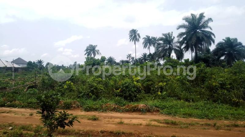 Land for sale Off Nddc Road. Ikwerre Rivers - 1