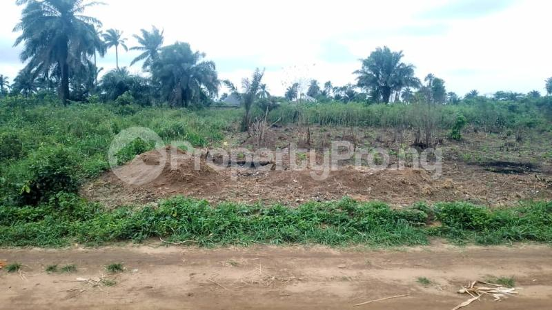 Land for sale Off Nddc Road. Ikwerre Rivers - 2