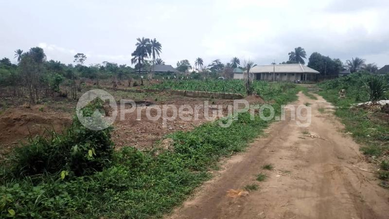 Land for sale Off Nddc Road. Ikwerre Rivers - 0