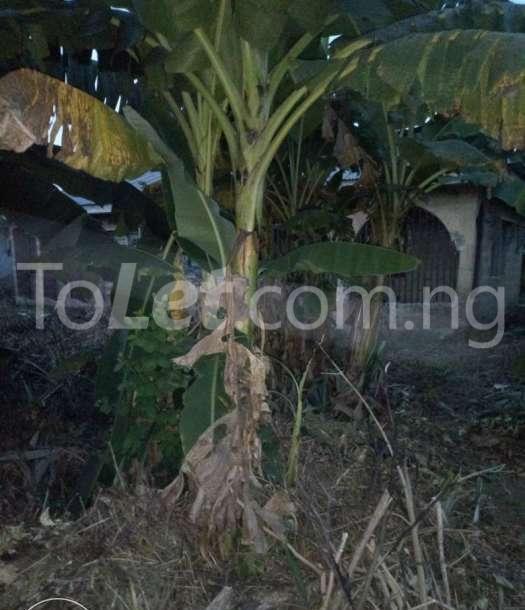 2 bedroom Land for sale Abeokuta North, Ogun State, Ogun State Abeokuta Ogun - 6
