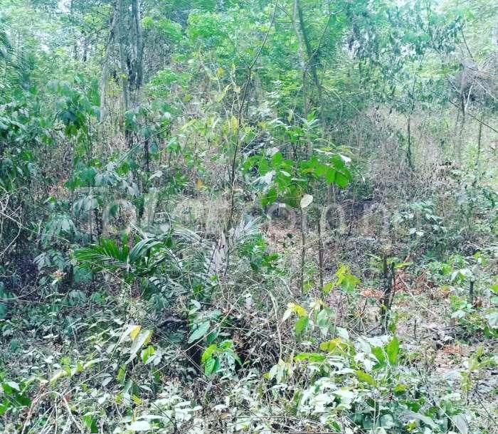 Land for sale Odogbolu, Ogun Odogbolu Ogun - 0