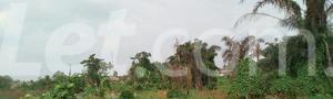 Mixed   Use Land Land for sale Ise/Orun Ise/Orun Ekiti - 2