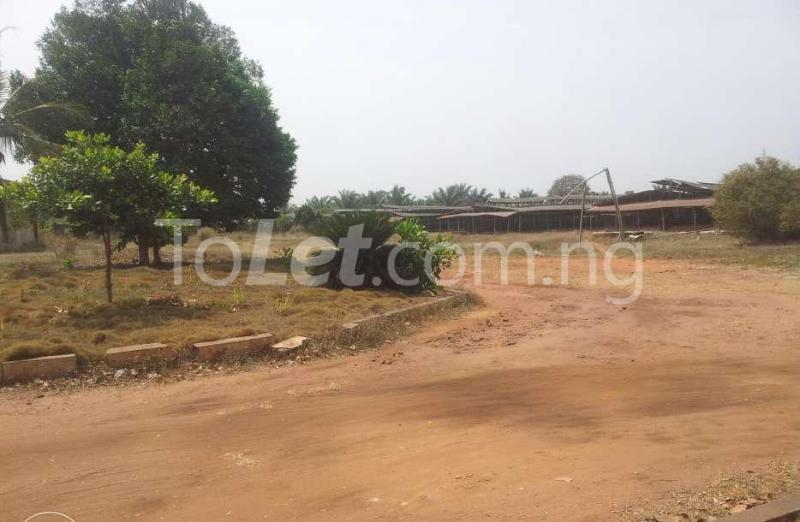 Commercial Property for sale Benin Esan North-East Edo - 2