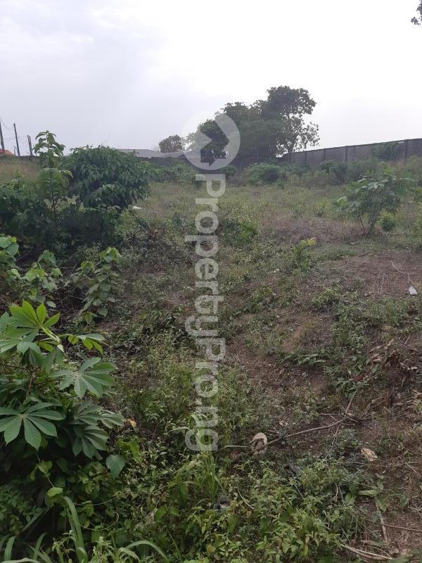Residential Land for sale Goodnews Estate Sangotedo Ajah Lagos - 4