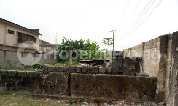 Residential Land for sale Good Homes Estate, Ado Road Ado Ajah Lagos - 4