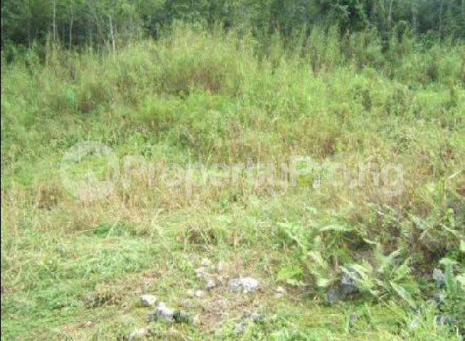 Mixed   Use Land Land for sale Katampe Main Abuja - 0