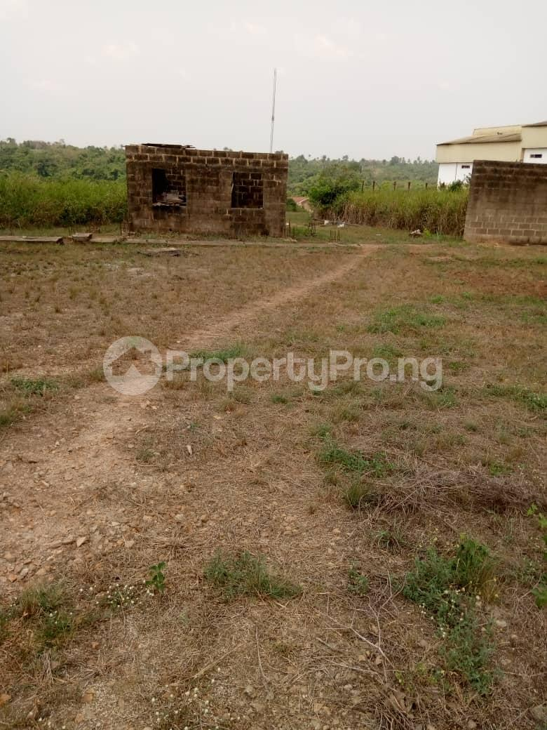 Commercial Land Land for sale Besides Nigerian Sinotrucks Assembly Plant And Vitafoam Company Ifo Ifo Ogun - 1