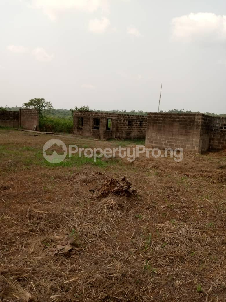 Commercial Land Land for sale Besides Nigerian Sinotrucks Assembly Plant And Vitafoam Company Ifo Ifo Ogun - 2