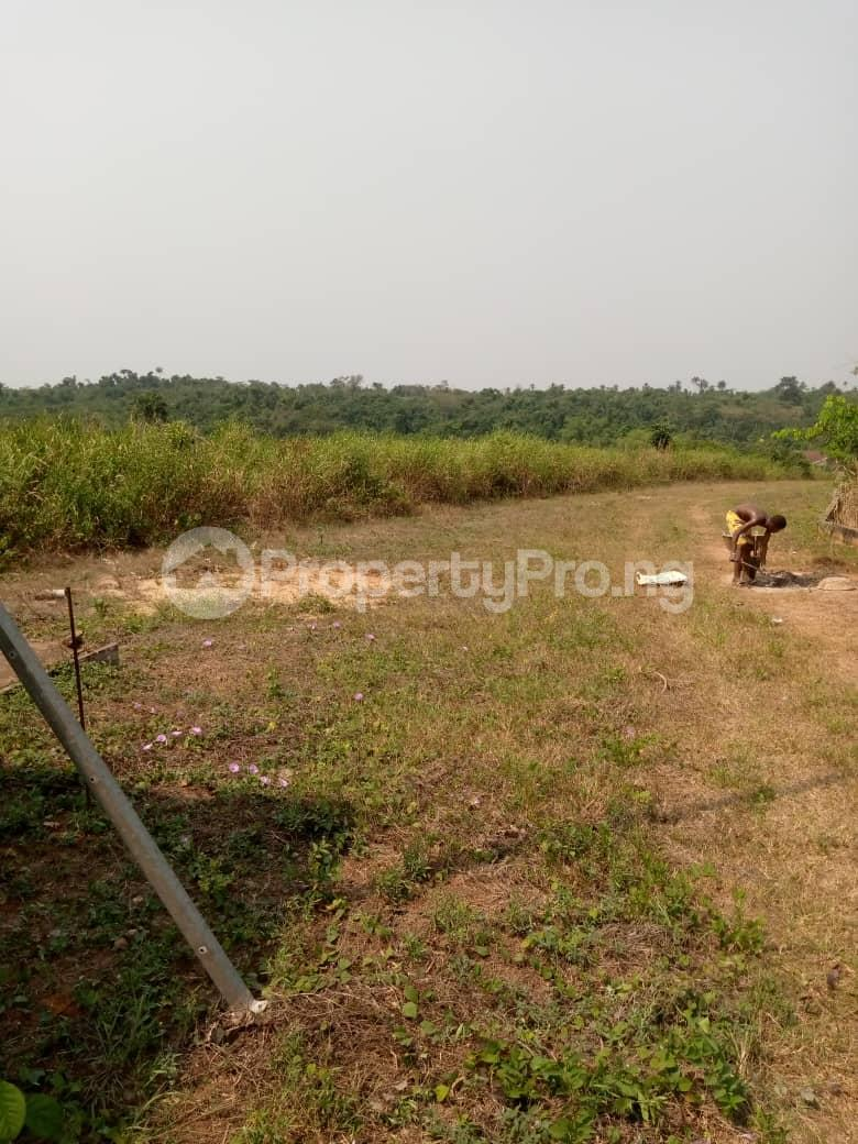 Commercial Land Land for sale Besides Nigerian Sinotrucks Assembly Plant And Vitafoam Company Ifo Ifo Ogun - 3