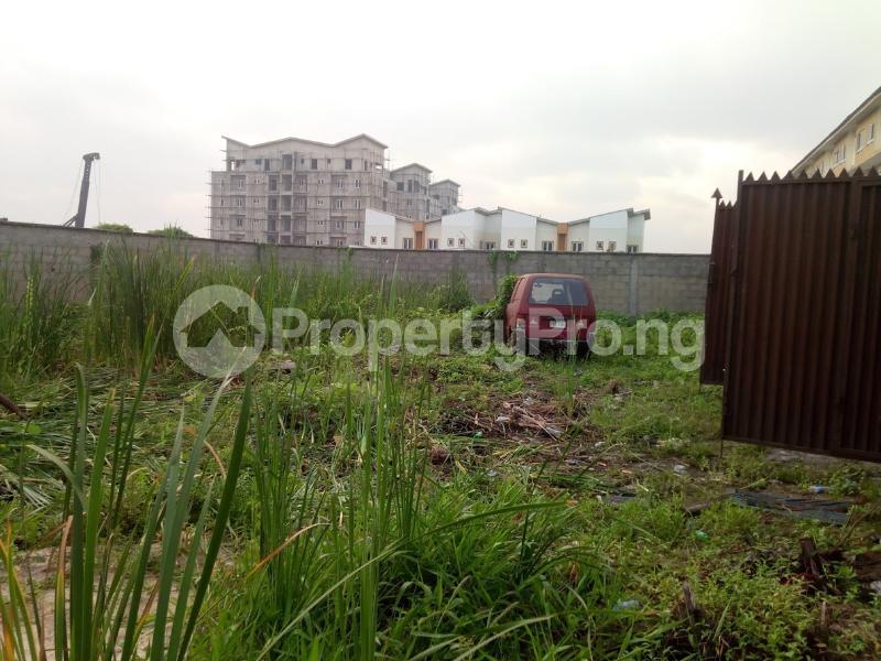 Residential Land for sale Back Of Jacob Mews Estate Alagomeji Yaba Lagos - 0