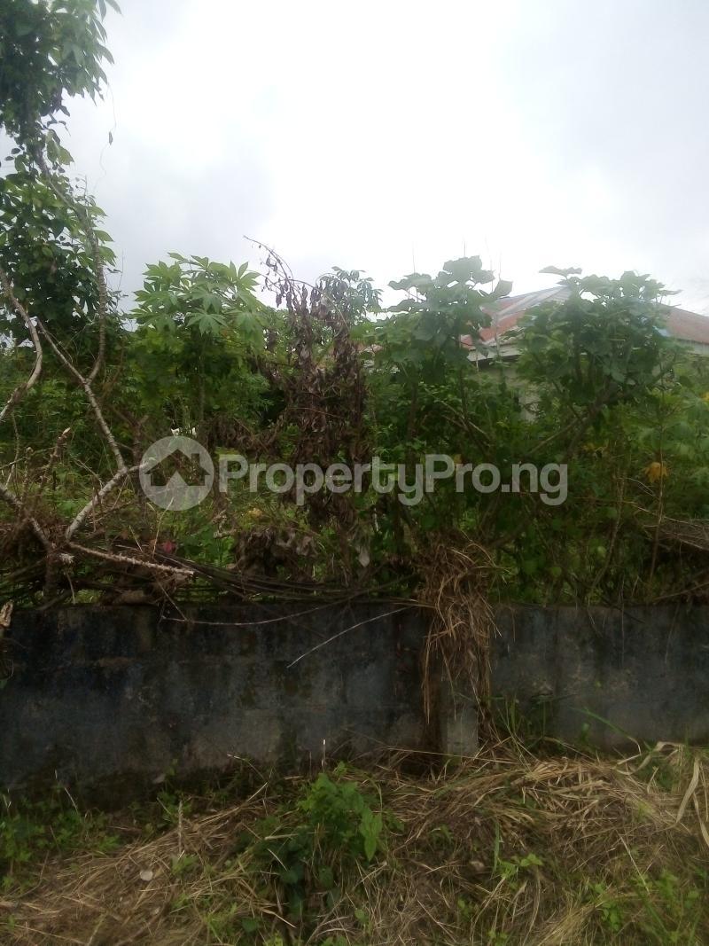 Residential Land Land for rent Mosafote town Via Ibafo town Owode Obafemi LGA Ogun state Ibafo Obafemi Owode Ogun - 0