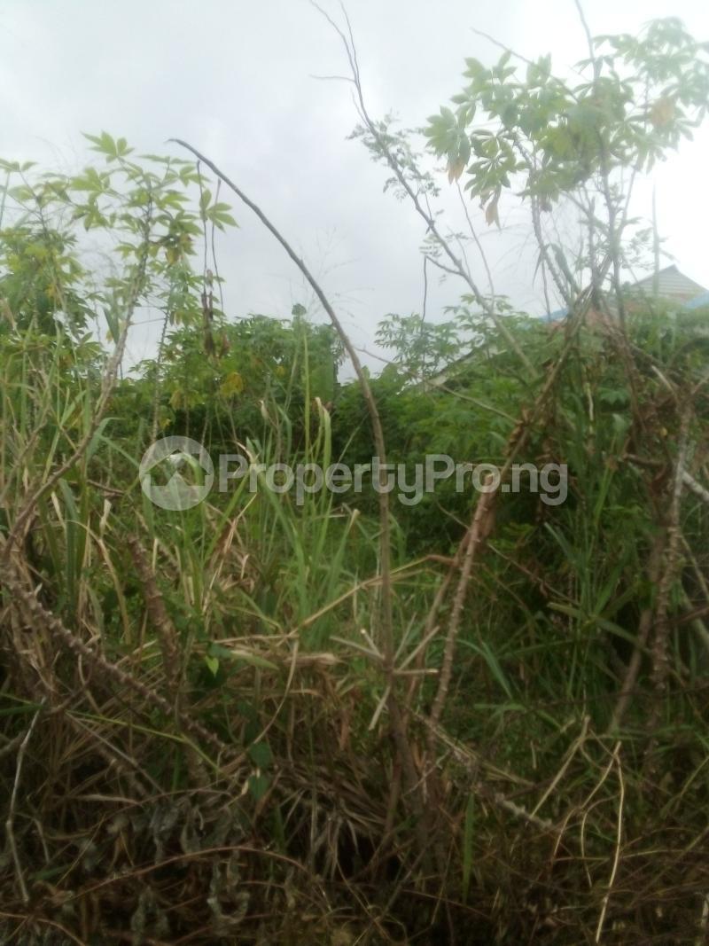 Residential Land Land for rent Mosafote town Via Ibafo town Owode Obafemi LGA Ogun state Ibafo Obafemi Owode Ogun - 1