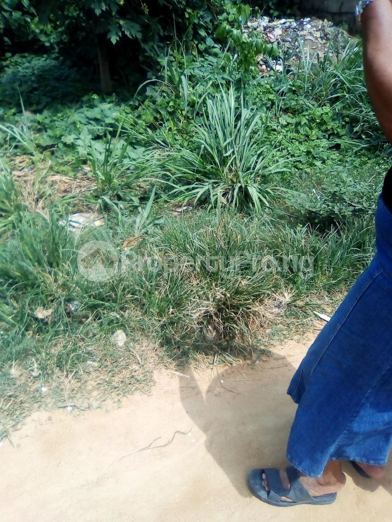 Residential Land for sale Church Street Igbo Olomu Junction Ikorodu Isawo Ikorodu Lagos - 1